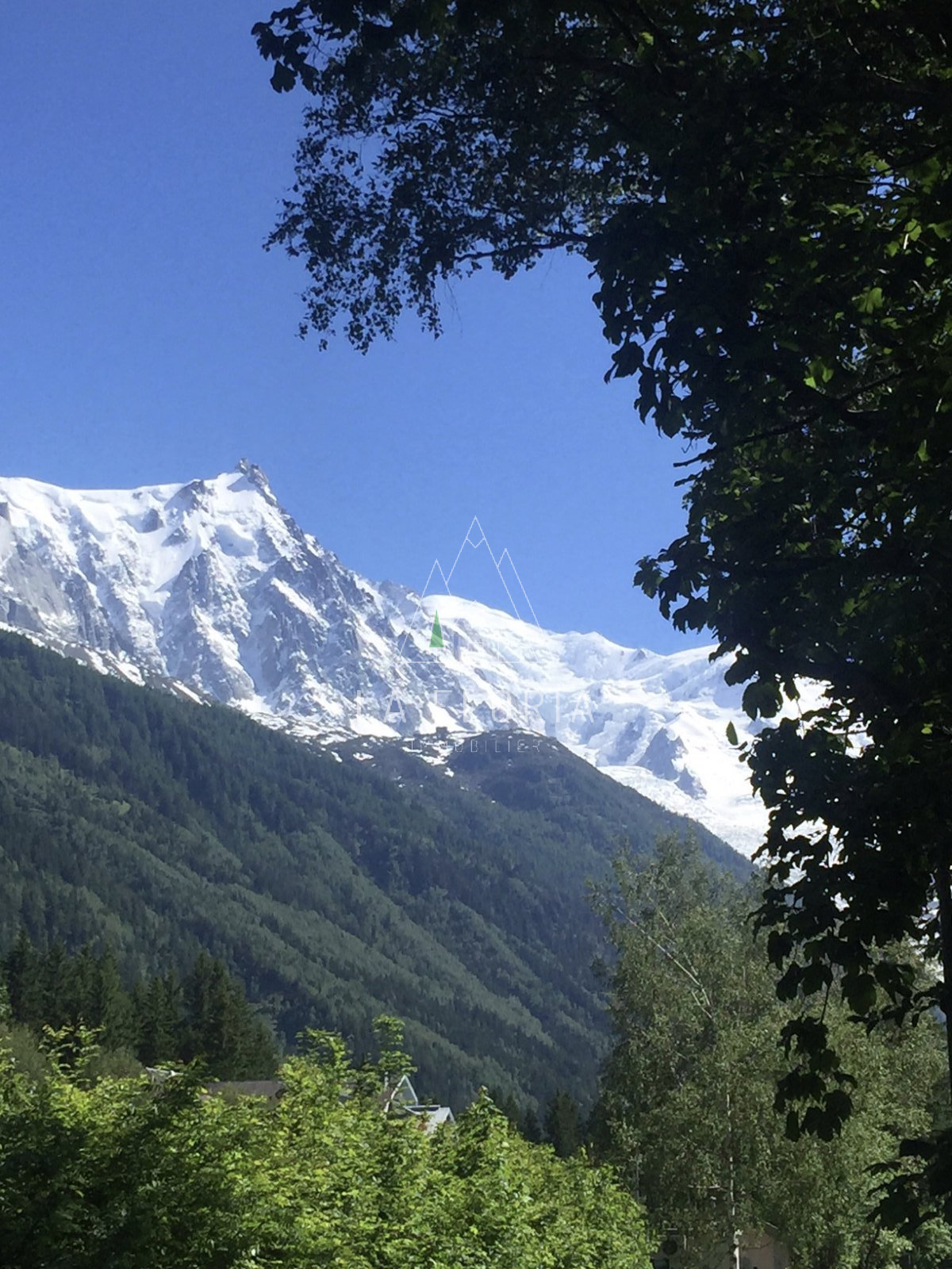 2079 M2 PLOT OF PRIME LAND WITH PLANNING PERMISSION FOR A CHALET OF 400 M2, CHAMONIX